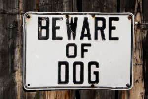 make your house look lived in dog sign